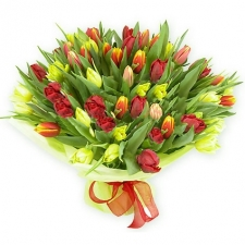 bouquet_of_51_colorful_tul-4ed6c9cc0bad4